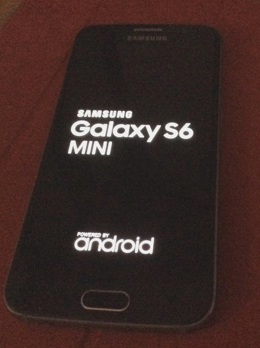 Galaxy-S6-Mini-Leader