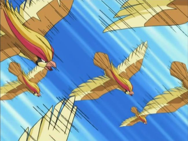 Solidad_Pidgeot_Double_Team
